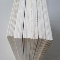 Best good quality 9mm bleached poplar plywood/12mm 15mm full poplar plywood for india market wholesale