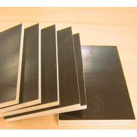Best concrete formwork plywood with WBP glue wholesale