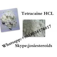 Best Efficient Local Anesthetics Raw Powder Tetracaine HCL For Pain Reliever CAS 136-47-0 wholesale