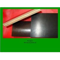 Buy cheap MR film faced plywood from wholesalers