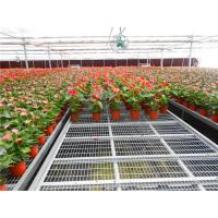 Best metal Greenhouse Bench seedbed table for plants seedling wholesale