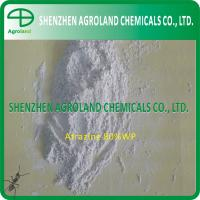 Best 1912-24-9 Herbicides Atrazine 97%TC 90%WDG 80%WDG 80%WP 50%WP 50%SC wholesale