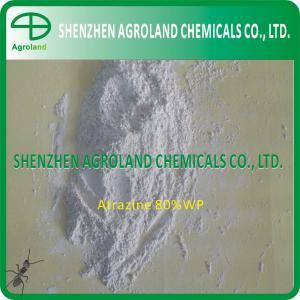 Best 1912-24-9 Herbicides Atrazine 97%TC 90%WDG 80%WDG 80%WP 50%WP 50%SC wholesale
