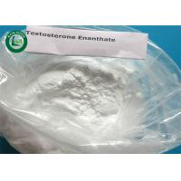 Lean Muscles Gain Injectable Male Hormone Testosterone Enanthate CAS 315-37-7