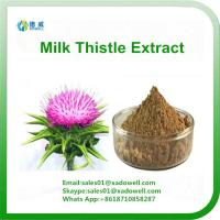 China High Quality Milk Thistle Extract Silymarin 80% on sale