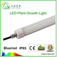 Best Hydroponic LED Tube Grow Lights T8 With Rotatable End Cap , 120 Degree Angle wholesale