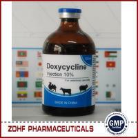 Iron and doxycycline