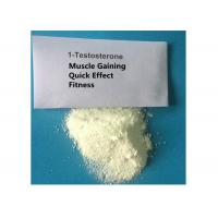 China 1- Testosterone 65-06-5 Muscle Building Strong Effects Fitness Steroid Powder on sale