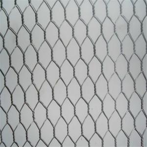 Best SS Rabbit / Chicken Hexagonal Wire Netting , Light Duty Garden Mesh Netting wholesale