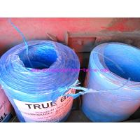 Cheap 22500D Blue PP Raw Material Polypropylene Tying Twine Packing Rope SGS Certification for sale