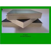 Buy cheap film faced shuttering plywood from wholesalers