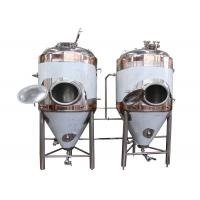 Best DYE Full-Automatic Conical Beer Fermenter With Vacuum Relief Valve wholesale