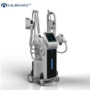 China beauty machine 2014/Top fat freezing machine/cryolipolysis machine on sale