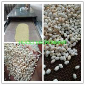 China Microwave drying Machine /Sterilizing Machine/dried nut Microwave dryer on sale
