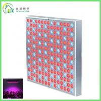 Best Red LED Indoor Garden Lights / Energy Efficient LED Flowering Grow Lights , AC 85~265V wholesale