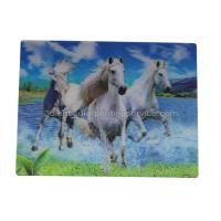Best UV Offset Printing Lenticular 3D Fridge Magnets For Gift , Printed Fridge Magnets wholesale