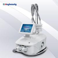 Best Customized Color Cryolipolysis Fat Freeze Slimming Machine 2 Handles Work Together wholesale
