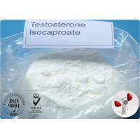 Bodybuilding Raw Testosterone Powder Testosterone Isocaproate CAS 15-37-7