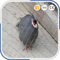 Best Small bird 1.2 mm with 30 mm mesh eye size stainless steel wire rope aviary netting wholesale