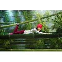 Buy cheap bamboo 3d oil painting gallery from wholesalers