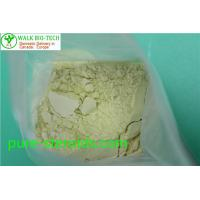 Best Effective Bodybuilding White Trenbolone Powder Trenbolone Base CAS 10161 - 33 - 8 wholesale