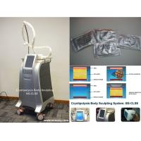 Body Slimming / Shaping Cryolipolysis Fat Freezing Machine With Intelligent Temperature Control