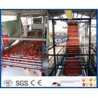 China 200KW Power Tomato Ketchup Machine Tomato Processing Machine 304 Stainless Steel Material on sale