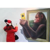 Best orangutan 3d oil painting picture wholesale