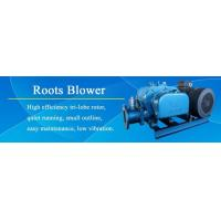 DSR50 0.78-1.22m3/min Aquaculture Aeration Roots Rotary Blower