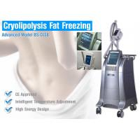 Best Weight Loss Cryolipolysis Body Slimming Machine , Fat Burning Equipment Non - Surgical Liposuction wholesale