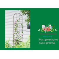 Best Metal Wall Garden Flower Trellis Powder Coated For Climbing Flowers wholesale