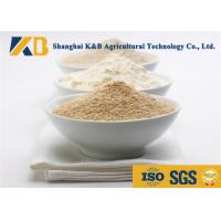 Best Water - Soluble Nutribiotic Raw Organic Rice Protein Food Grade For Diet Meal wholesale