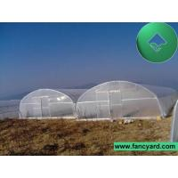 Arch Greenhouse, Film Greenhouse, Vegetable-Glowing