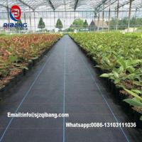 China Black or Green agricultural pp weed control mat/ ground cover Biodegradable Polypropylene Nonwoven Mat Weed Control Land on sale