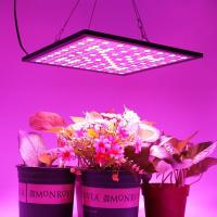 Best 300x300mm Indoor Full Spectrum LED Grow Lights Dimmable With 3000K-6500K CCT wholesale