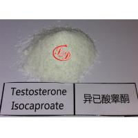 Best No Side Effect Anbolic Steroid Testosterone Isocaproate Powder CAS15262-86-9 for Fat Loss wholesale