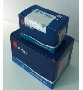 Best Blood DNA Isolation Max Kit 16 Preps / 32 Preps For Rapid Preparation Of Genomic DNA wholesale
