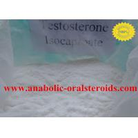 Pure Testosterone Steroid Testosterone Isocaproate Powder 15262-86-9 No Side Effect