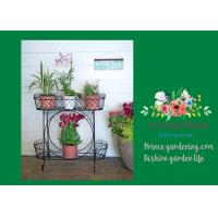 Best Herbs Graceful Metal Plant Stands / Ladder Plant Stand Powder Coated wholesale