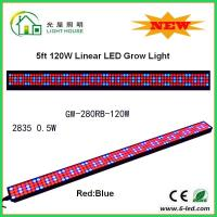 Cheap IP44 High Brightness Linear Grow Lights For Indoor Plants , PPMA Cover for sale