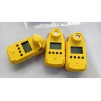 China CH4 CO Portable Gas Detection Monitors Exibd I Explosion Protection on sale