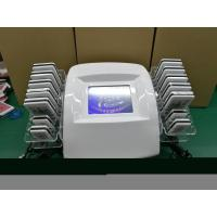 Best Diode Laser Multifunction Beauty Machine For Fat Reduction / Body Shaping wholesale