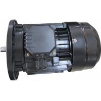 Best MINGDONG MS Series 3 Phase Induction Motor , 2 Pole Electric Motor B3 B5 B14 High Efficiency wholesale