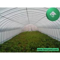 Greenhouses,Commercial Greenhouse,Plastic Greenhouse