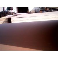 Best kraft paper faced plywood  to USA wholesale