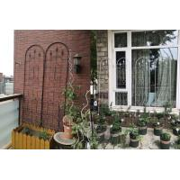 Best Powder Coated Garden Plant Trellis Beautiful European Style Fit Outdoor Vine Plant wholesale