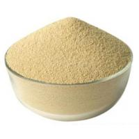 Best High Activity Feed Enzymes In Poultry Nutrition Cream White Powder Fat Utilization Improvation wholesale