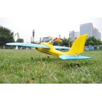 Best Mini 2.4Ghz 4 Ch Wingspan21.9in Dolphin Glider Beginner RC Airplanes EPO Brushless RTF wholesale