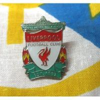 Best Iron / Brass sports lapel pins badges Custom Badges , metal football badge wholesale