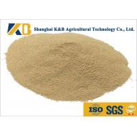 Best Non - Allergen Natural Feed Additive / Chicken Feed Protein High Biological Value wholesale